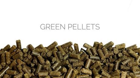 Green pellets - фото 4570